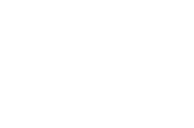 Alonso y Noelia Online